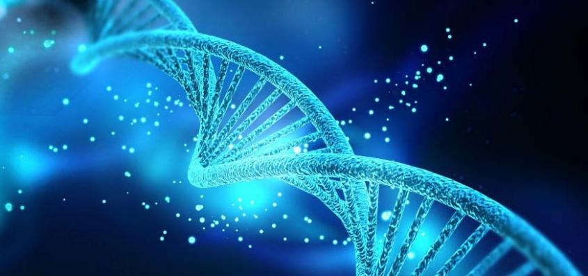 El éxito en tu ADN
